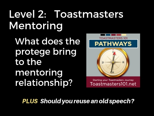 Level 2 Toastmasters Mentoring Speech Project