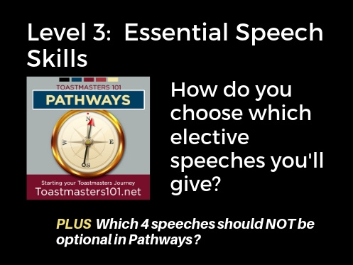 Level 3 Essential Speech Skills Toastmasters 101
